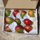 Mango, reif geerntet, 4 Kg Karton