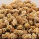 Maulbeeren süß, getrocknet, naturbelassen, Wildsammlung 200g
