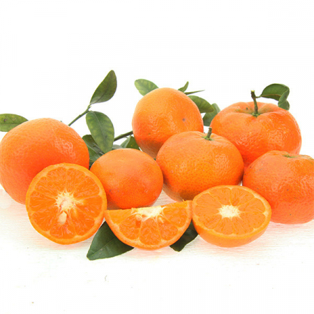 Clementines, (clementina), Quinta cultivation, Kg