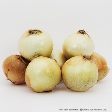 Zwiebeln neue Ernte  Kg