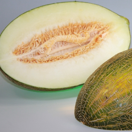 Melone Pele de Sapo Premium Portugal, kg