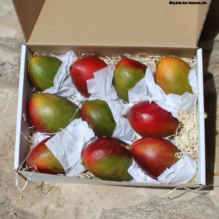Mango reif geerntet   4 Kg Karton