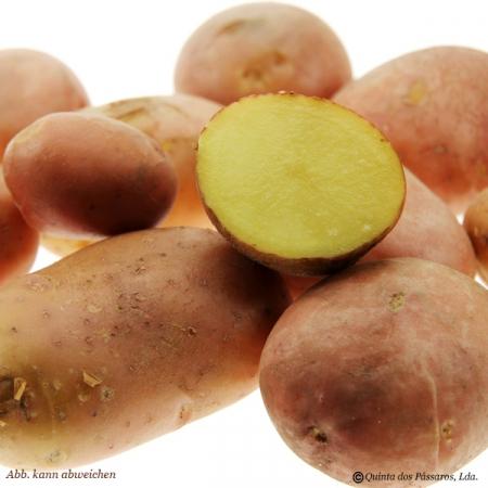 Kartoffeln mit roter Schale (Batata vermelha)  Kg