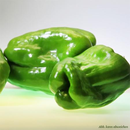 Paprika grün, Quinta-Anbau ca. 500g Pack