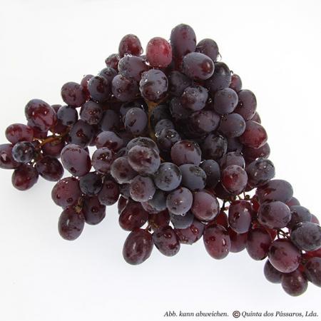 Weintrauben kernlos, dunkel 500g Pack