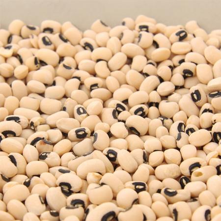 Bohnen getrocknet, weiße Wachtelbohnen, Augenbohnen (feijao frade) 500g
