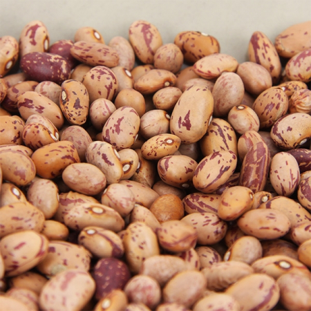 Bohnen getrocknet, Cranberrybohnen (feijao catarino) 500g