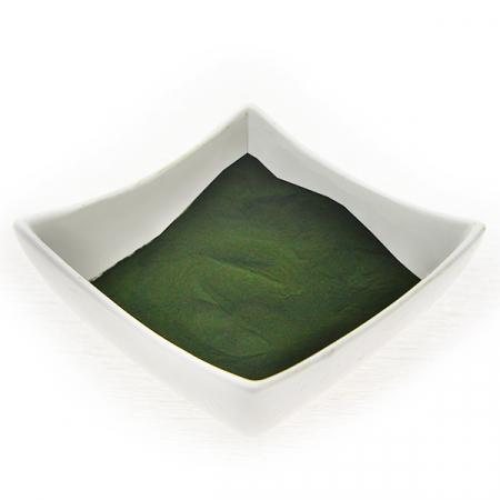 Alge Chlorella, gemahlen.  Kontrollierter Qualität
