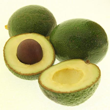 Avocado Reed, die Runde Quinta-Anbau kg