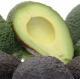Avocado Hass, die buttrige, Quinta-Anbau kg