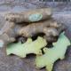 Ingwer - Knollen, frisch, naturbelassen, 500g