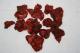 Erdbeeren, unbehandelt, sonnengetrocknet, 100g